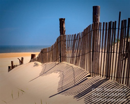 Fenwick Island Dune Fence and Shadows